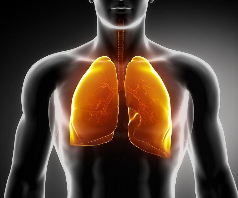 Considerações sobre Respiração e Apoio (Parte 1)